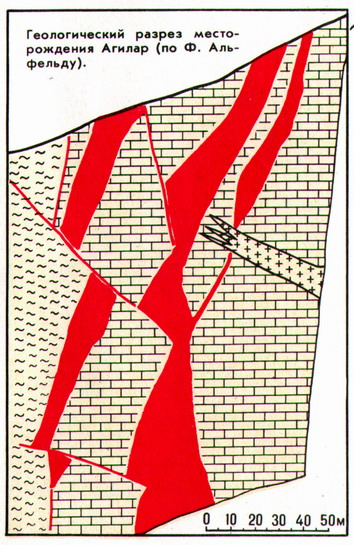 The geological cross section of the Aguilar deposit (according to F.Alfeld)