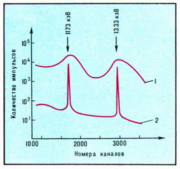 The Gamma-ray spectrum of the cobalt isotope