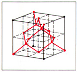 The cell of the crystal lattice of the diamond