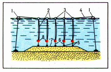 (Figure # 7) The installation of the hanging charges
